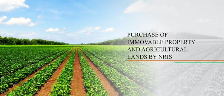 Purchase of Immovable Property and Agricultural Lands by NRIs
